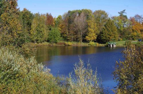 Dolní rybník sestavidlem